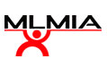 MLM Technology Corporation - MLMIA
